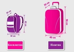 багаж лоукостера Wizz Air